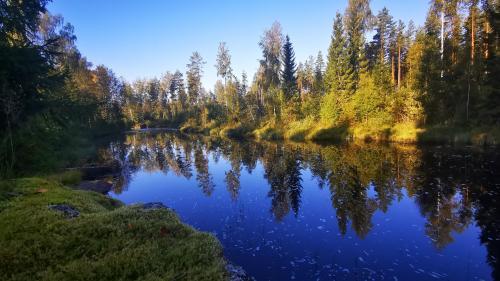 Ferienhaus Silkesdamm Fluß